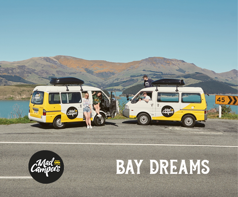 Mad Campers & Bay Dreams