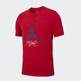 Jumpman DNA Graphic T-Shirt